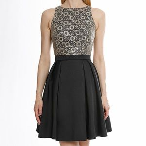 Terani Couture Sequined Fit & Flare Dress💋BNWT!